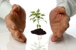הקמת עסקים וחברות אדי גוטסמן רואה חשבון